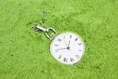 Old pocket watch buried in green sand — Stock Photo