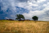 Donbass landscape — Stock Photo