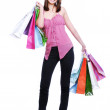 Girl shopper — Stock Photo #1463326