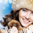 Stock Photo: Wintry concept