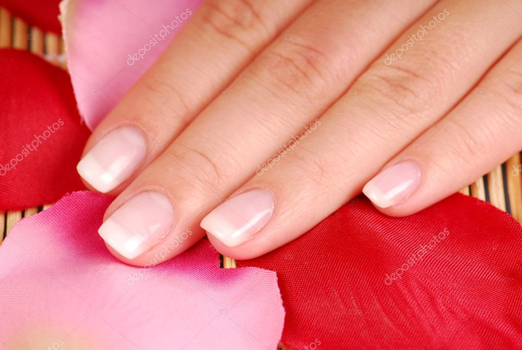 Elegance woman fingers are on the background of rose petal  Stock Photo #1470353