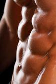 Beautiful torso — Stock Photo