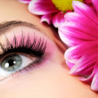 Stock Photo: Beauty pink make-up