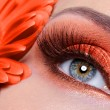 Stock Photo: Fashion orange eye make-up