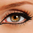 Woman close-up eye. False lashes. Liner. - Stock Photo