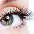 Foto Stock: Female eye with curl false eyelashes