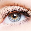 Woman eye with a curl false eyelashes — Foto Stock