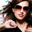 Beautiful glamour fashionable woman - Stock Photo