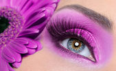 Purple eye make-up with gerber flower — Stok fotoğraf