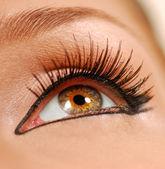Beauty close eye. — Stock Photo