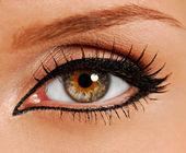 Olho de close-up de mulher. cílios falsos. forro. — Foto Stock