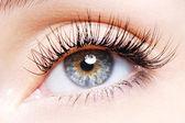 Occhio di donna con un ricciolo di ciglia finte — Foto Stock