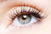 Woman eye with a curl false eyelashes — Foto de Stock
