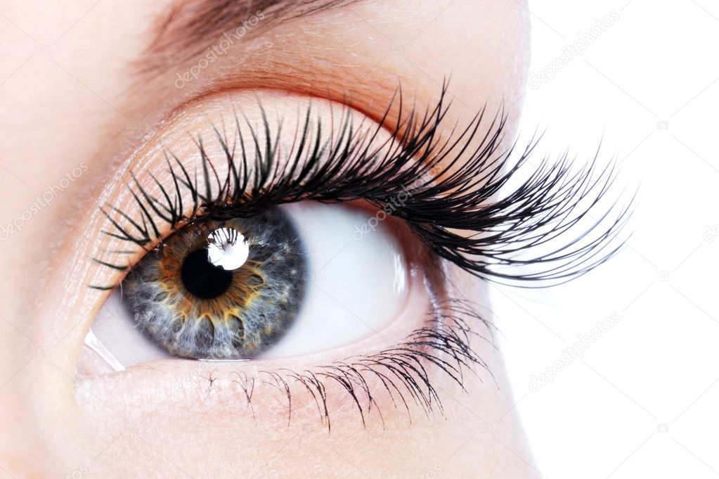 Beauty female eye with curl long false eyelashes - macro shot over white background — Stock Photo #1513057