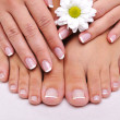 Skincare of a beauty female feet — 图库照片