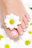 Beauty pure female foot — Stock Photo