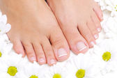 Flowers around beautiful female feet — Stock Photo