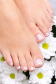 Feet with the pedicure and flowers — Stock Photo