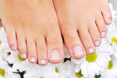 Beautiful well-groomed female feet — Stock Photo