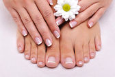 Skincare of a beauty female feet — Stockfoto