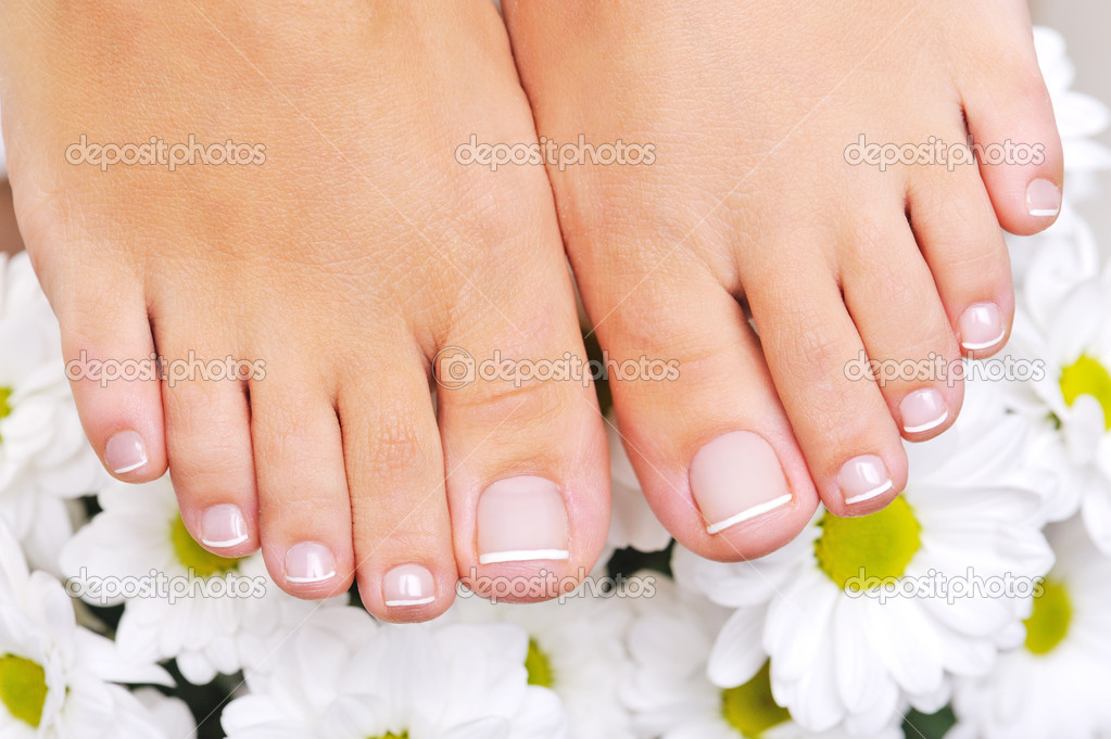 Bellissimi piedi femminili ben curati foto stock 1534800 for Piani di studio 300 piedi quadrati