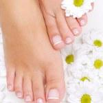 Flowers around beautiful woman feet — Stock Photo