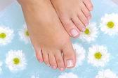 Washing female legs — Stock Photo