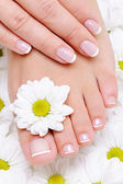 Beauty treatment for female feets — Stock Photo