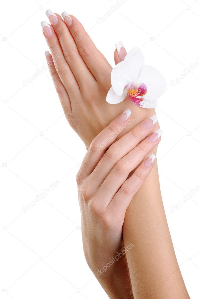 Well-groomed woman hands with flower - over white background — Stock Photo #1552760