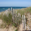 Lake Michigan Dunes — Stock Photo