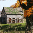 Stock Photo: Dilapidated rural house