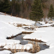 Stock Photo: Meandering stream in snow