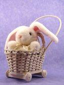 White bunny in pram — Stock Photo
