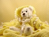 White bear in yellow — Stock Photo