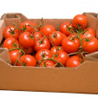 Tomatoes in box - Stock Photo