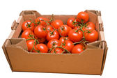 Tomatoes in box — Stock Photo