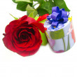 Rose and gift — Stock Photo #2252532