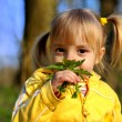 Little girl and wild flowers — Stock Photo