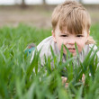 Boy in grass — Stockfoto