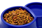 Dark blue bowl with pure water and a dry feed for pets — Stock Photo