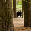 Loving couple on bench — Stock Photo #1421316