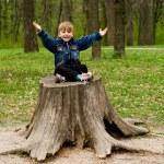 Little boy in wood — Stock Photo #1421357