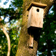 Stock Photo: Nestling box