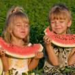 Little girl and boy with watermelon — Stock Photo #1423473