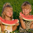 Royalty-Free Stock Photo: Little girl and boy with watermelon