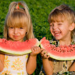 Little girl and boy with watermelon — Stock Photo #1423481
