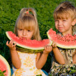Little girl and boy with watermelon — Stock Photo #1423504