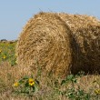 Royalty-Free Stock Photo: Haystack on the meadow