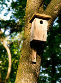 Nestling box — Stock Photo