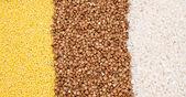 Millet, buckwheat, rice background — Stock Photo